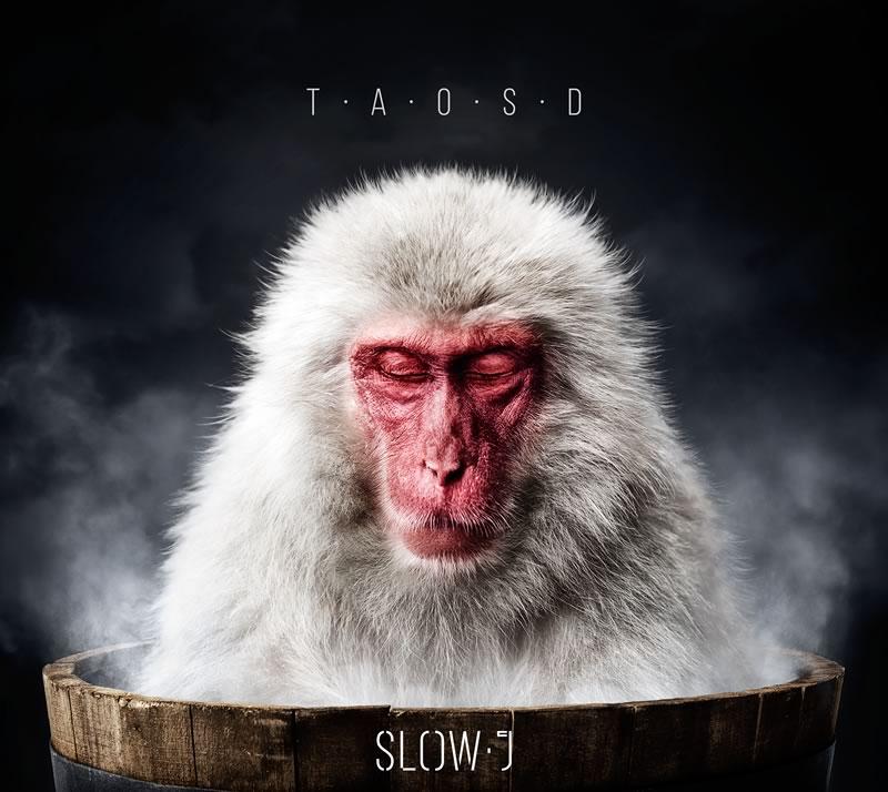 """Novo álbum de Slow J, """"T.A.O.S.D."""" hoje à venda"""