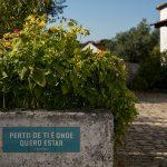 Voltar a viver a aldeia só em 2022 – Bons Sons novamente adiado